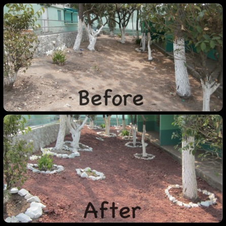 The second garden we completed at the school